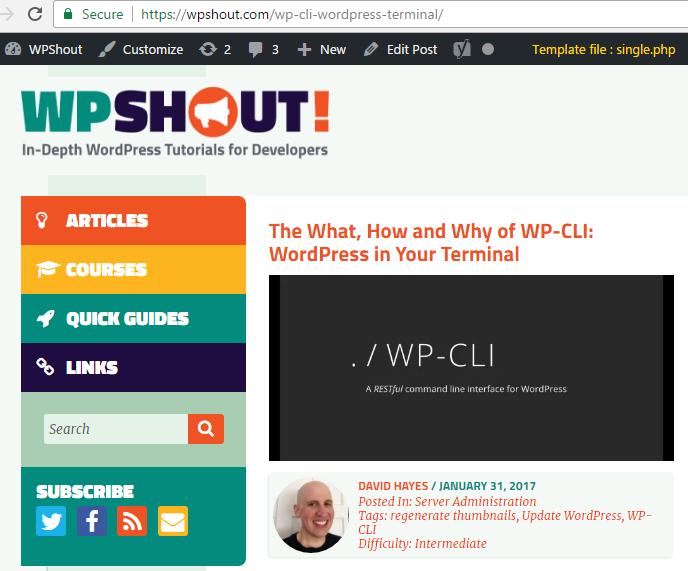 The The template currently in use – very useful for WordPress theme development