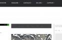 Media Temple premium WordPress hosting review