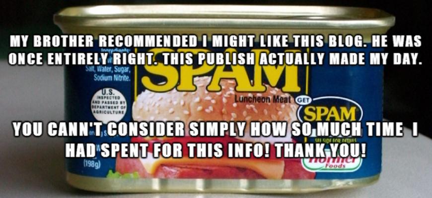 Spam meme   WordPress comment spam