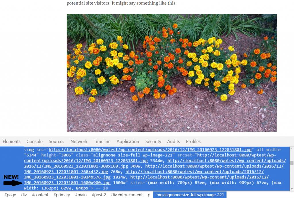wordpress responsive image size example