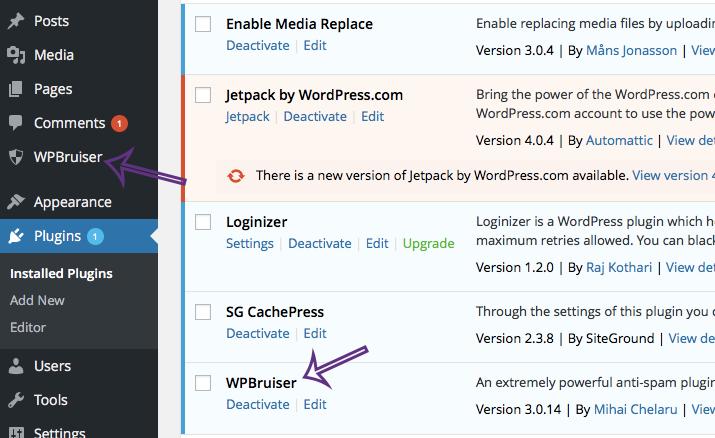 wordpress-spam-3