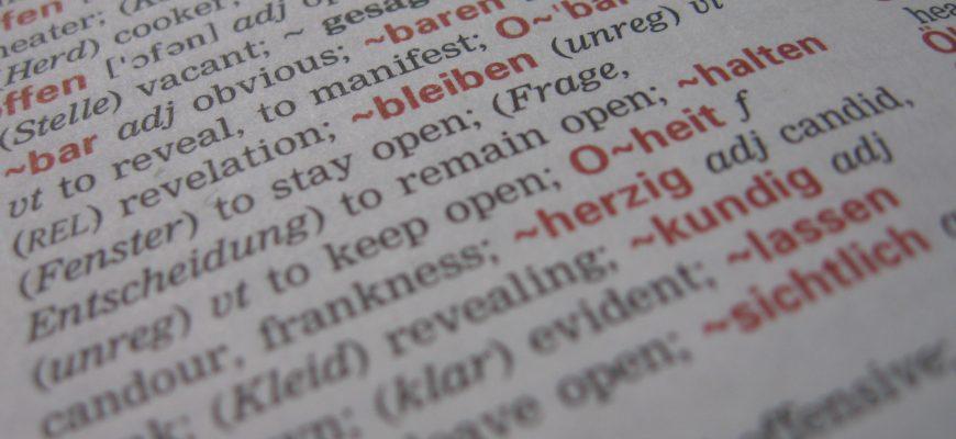 Dictionary | WordPress terminology