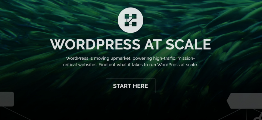 wordpress scale