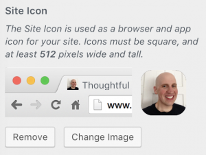 "A screenshot of the ""Site Icon"" (or favicon) feature of WordPress's Customizer"