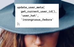 wordpress how to add and edit custom user meta