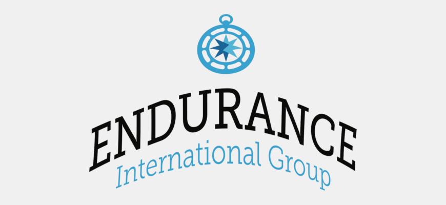 endurance international group review